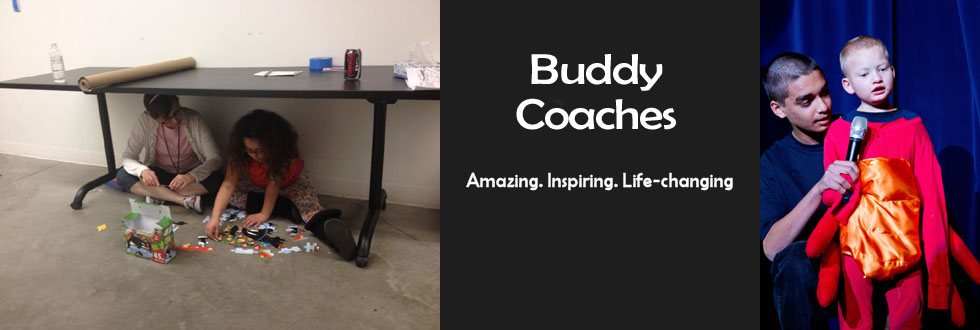Buddy Coaches banner